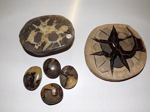 Septaria o pietra del drago