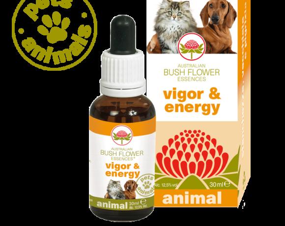 Vigor & energy