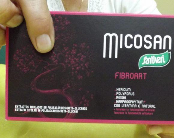 Fibroart – Micosan